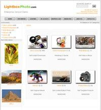 lightboxphoto_1